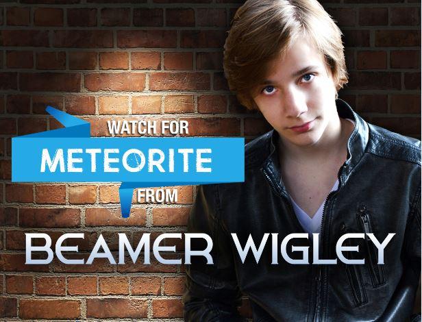 Beamer Wigley Meteorite Cover